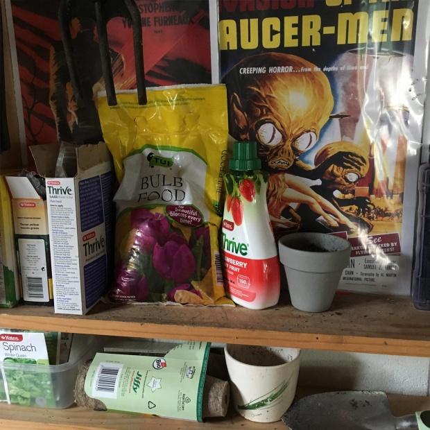 Garden-Shelves-Shed-planting-antipodean-garden