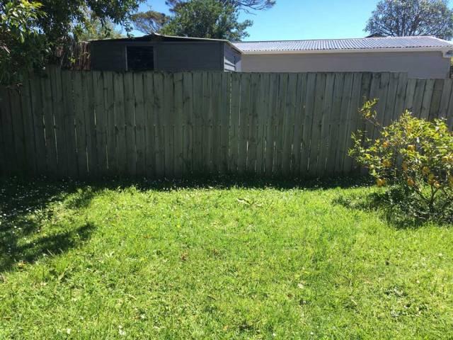 Antipodean Garden Lawn